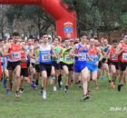2020-02-16 43 Cross Villa de Colindres 996